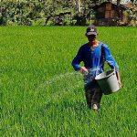 fertilizer image2